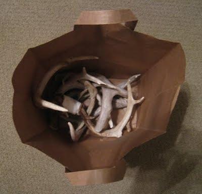bag of antlers